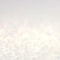 Använder man ett makroobjektiv, ser man den bestrukna ytan på GreenReceipt Premium